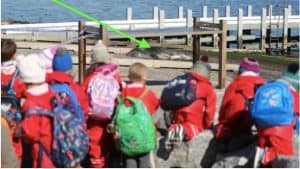 Lady Forster Kindergarten - A Day in the Life of Our Coastal Curriculum